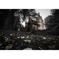 Hünegg Castle